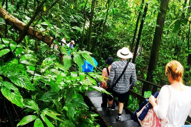 På promenad genom Costa Ricas regnskog Veragua.