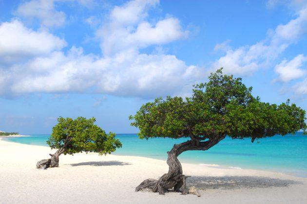 Eagle Beach på Aruba.