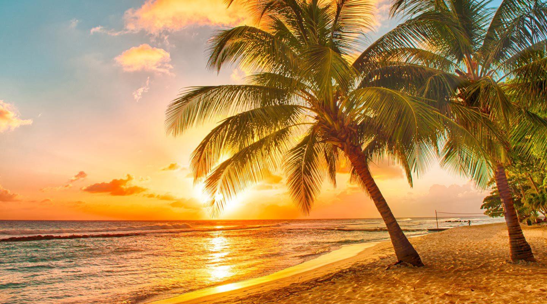 Vacker solnedgång över paradisstrand i Karibien.