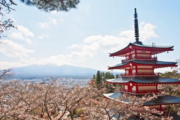 Vy över Mount Fuji, Japan, under vårblomningen.